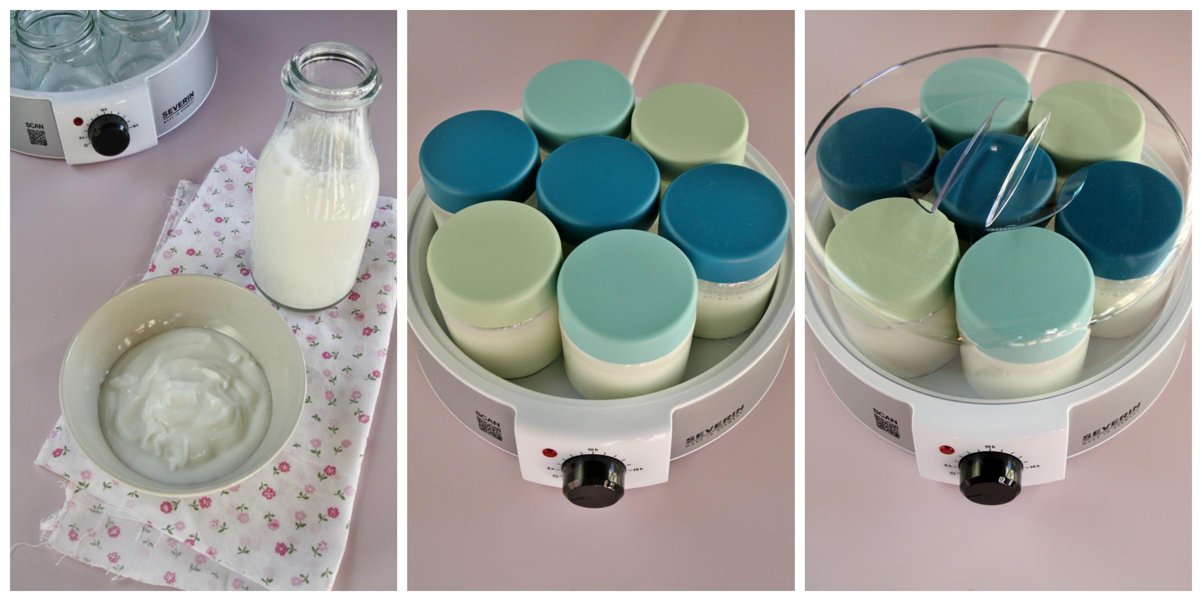 Passo-passo yogurt