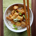Pollo in salsa Teriyaki
